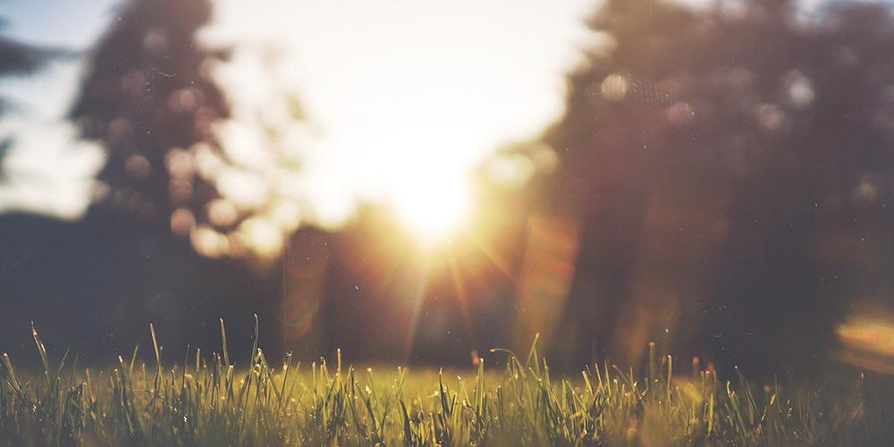Energie direkt aus der Umwelt beziehen mit der Wärmepumpe